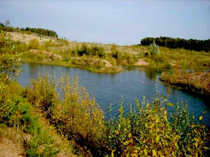 лызлово рузский район рыбалка