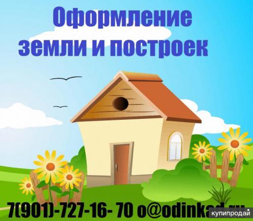 file_28dee1b.jpg